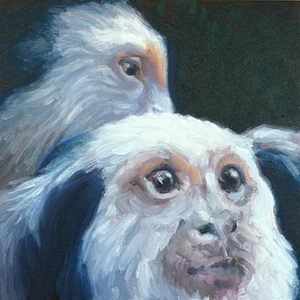 Monkey Eyes / Oil on Panel / 6 x 6 Inches ©JohnFarnsworth