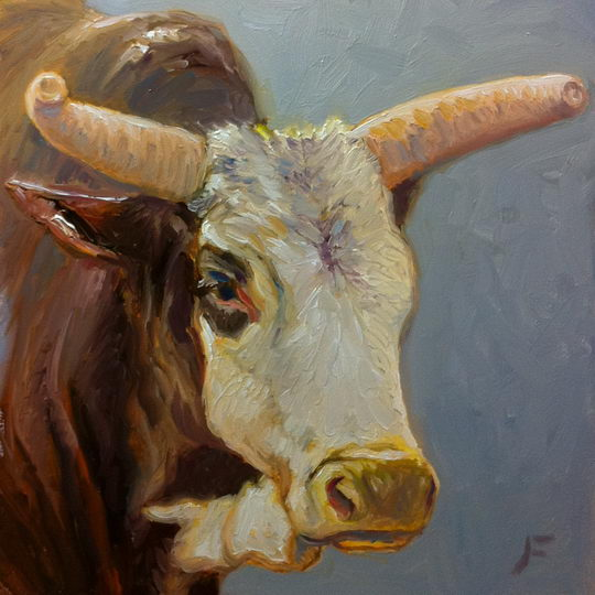 Galisteo Bull / Oil on Panel / 6 x 6 Inches / ©John Farnsworth