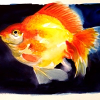 GOLDFISH / Daily Painting #1084