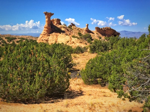 LONELY HOODOOS
