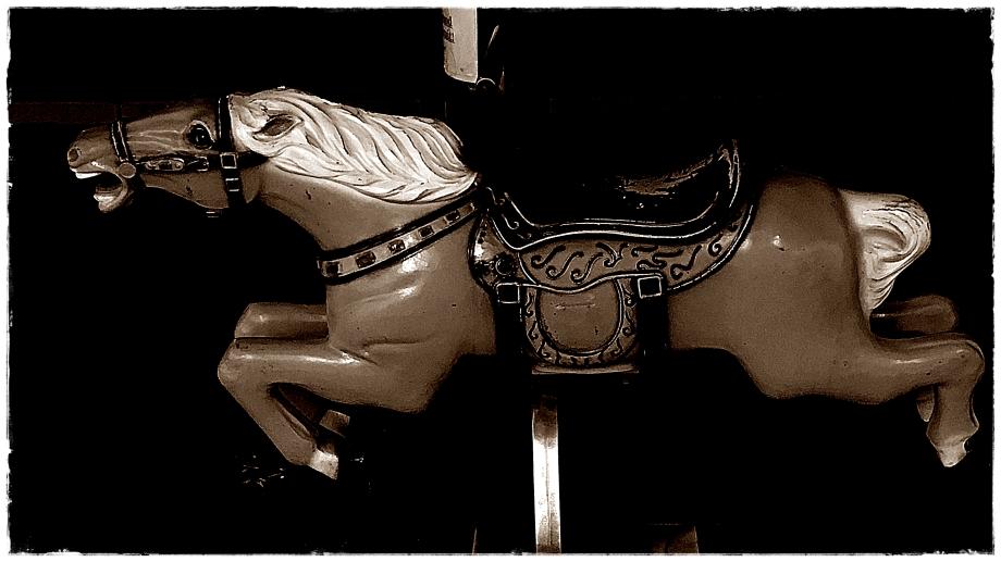 """TAOS """"QUARTER"""" HORSE 2IMG_7195.JPG"""